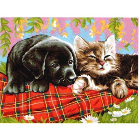 Peinture numéro - Comme chien et chat