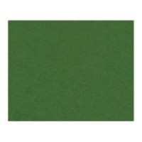 Feutrine 1mm vert x12