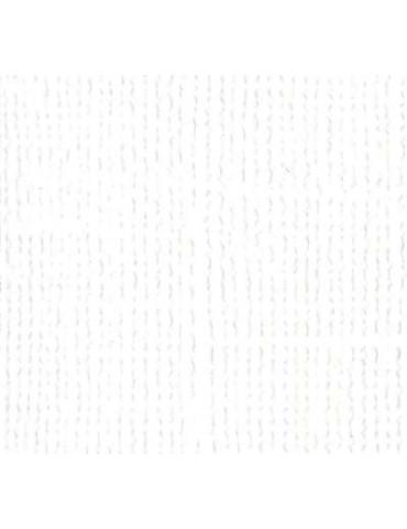Papier Scrap Bazzill White x25