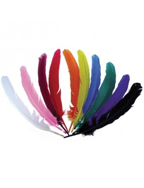Plumes indiennes multicolores x120