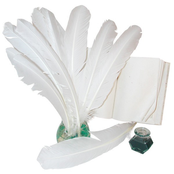 Grandes plumes blanches 34cm x10