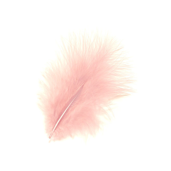 Plumes Marabout rose x10