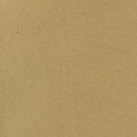 Papier Scrap Bazzill Kraft x25