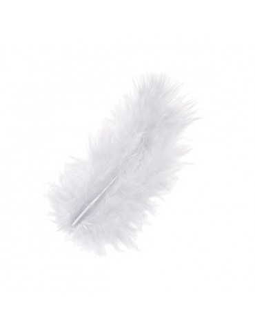 Plumes Marabout blanches x10