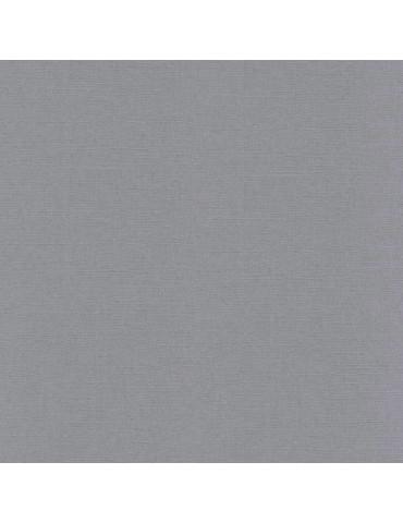 Bazzill Basics Paper Cendre - 25 feuilles