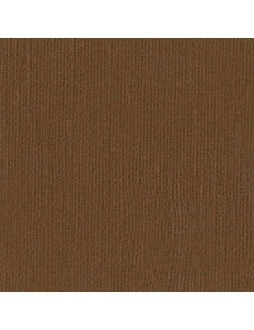 Papier Scrap Bazzill Walnut x25