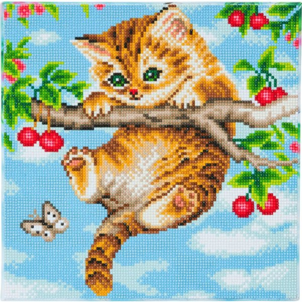 Kit broderie diamant Crystal Art Chaton - 30x30cm