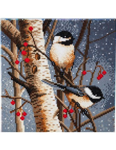 Kit broderie diamant Crystal Art Oiseaux -30x30cm