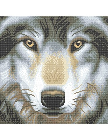 Kit Broderie diamant Loup - Tableau Crystal Art 30x30cm