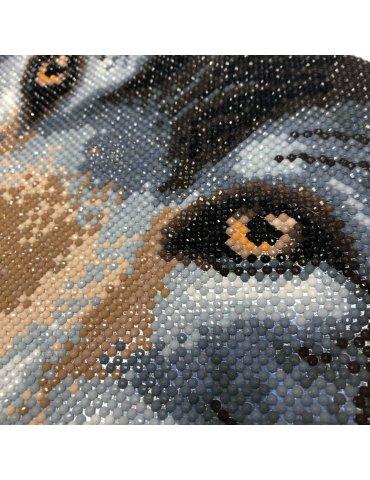 Kit Broderie diamant Loup - Tableau Crystal Art 30x30cm