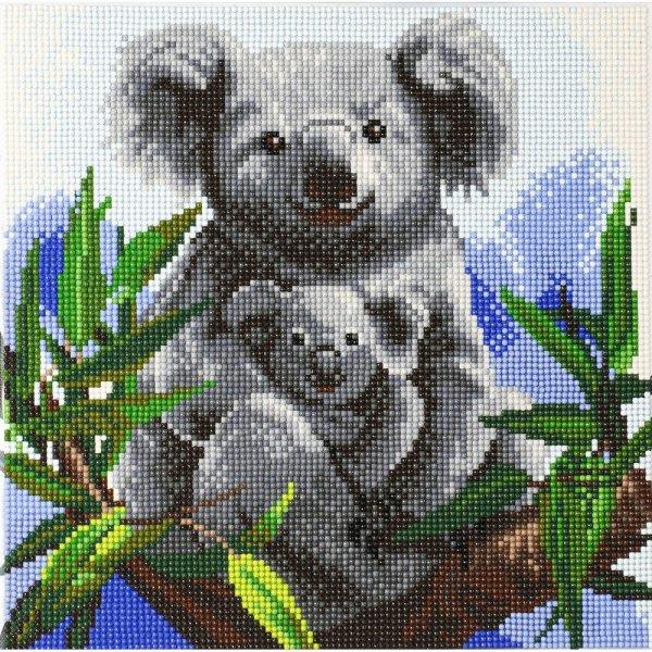 Kit Broderie diamant Koalas - Tableau Crystal Art 30x30cm