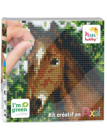 Kit créatif PIXEL - Tête de cheval 12x12cm - Pixel Hobby