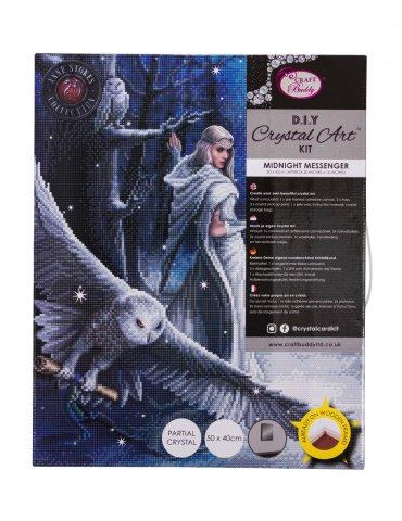 Kit broderie diamant Anne Stokes - Tableau Midnight Messenger emballé