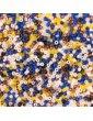 Mix Perles rocaille 2mm - Artisan - 17g - Rico Design