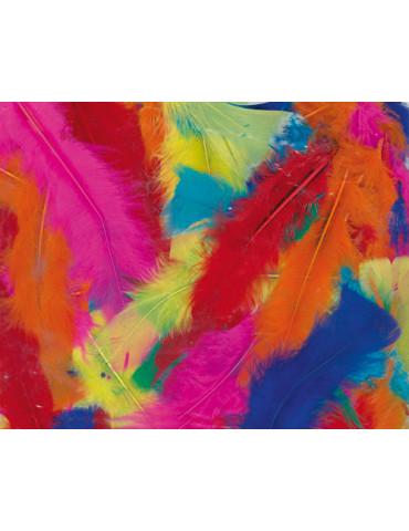 Plumes dinde multicolore -...