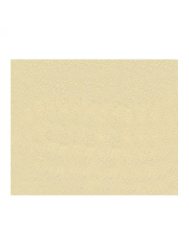 Feutrine 1mm beige x12